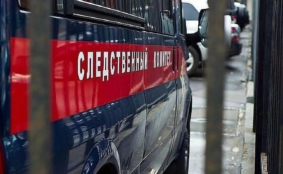 На жительницу приморского села Хороль завели уголовное дело за заведомо ложный донос