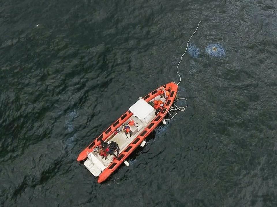 Исследователи заметили масляные пятна в акватории Финского залива. Фото: ЦПИ РГО