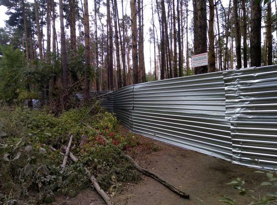 В Северном лесу Воронежа появился забор.