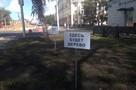 В Новокузнецке вместо деревьев установили таблички из пластика