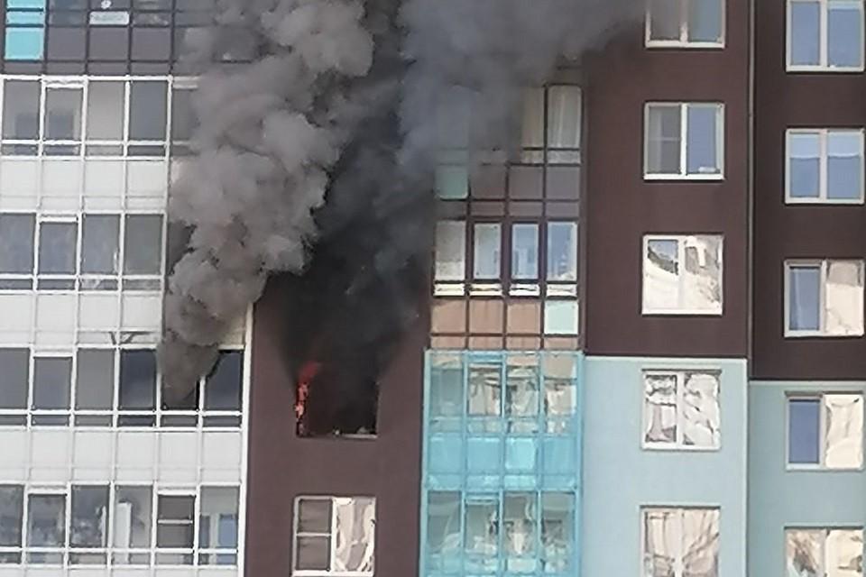 В высотке на Комендантском проспекте произошел пожар. Фото: vk.com/spb_today