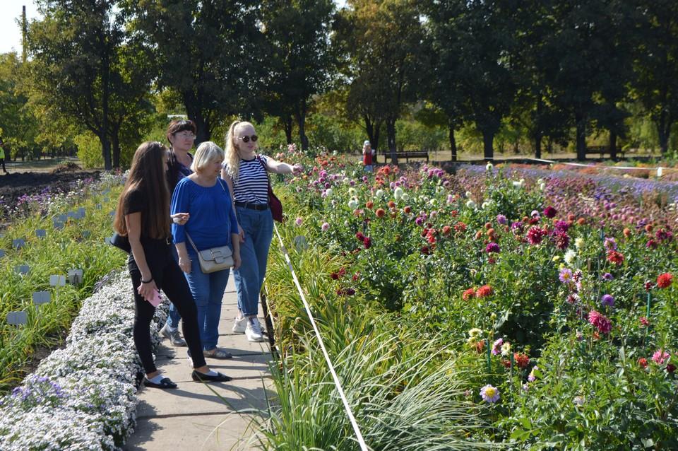Фоторепортаж: В Донецке любители отдыха на природе выбирают ботанический сад