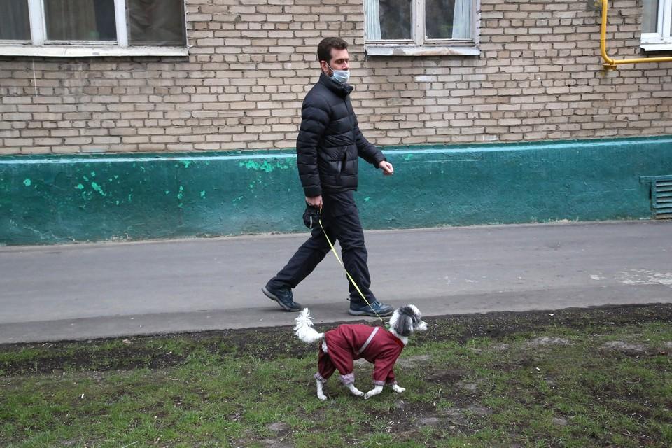 Коронавирус в Пензенской области, новости  на 25 сентября: за сутки снова подтвердились более 90 случаев заболевания
