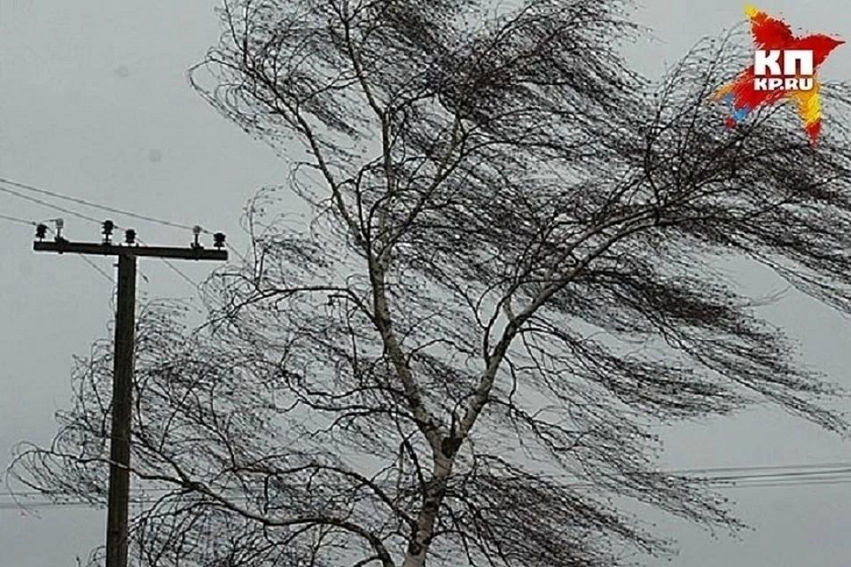 """Порывистые ветра могут создавать все больше проблем в жизни города. Фото: Архив """"КП"""""""