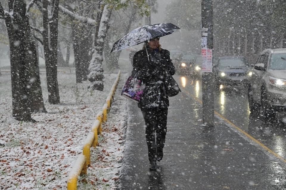 Заморозки до -5 градусов и мокрый снег придут в Кузбасс в воскресенье