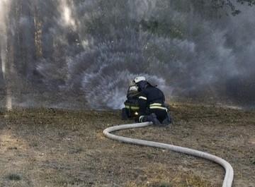 В Воронежской области пожар уничтожил целую улицу в селе