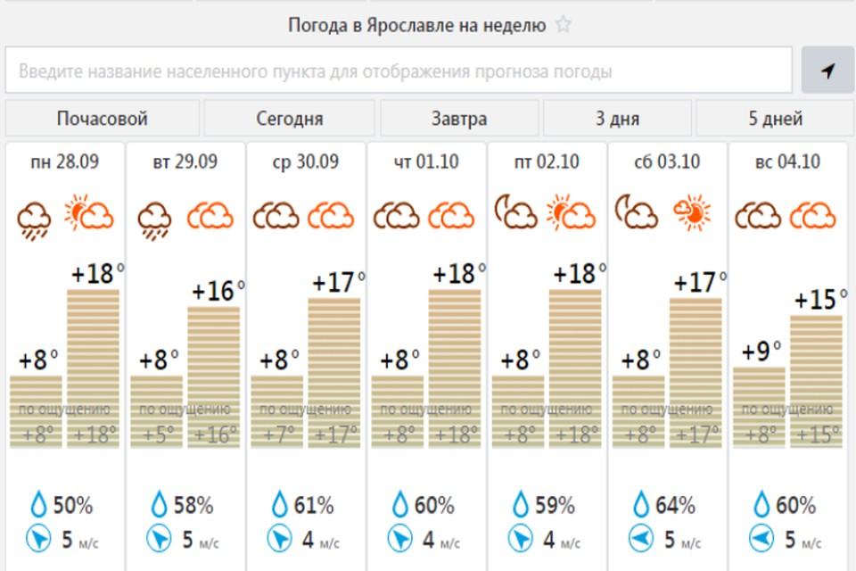 Наслаждаемся теплом. Скриншот meteovesti.ru