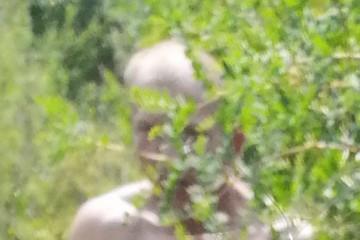 Делая селфи, девочка сфотографировала извращенца, который пытался на нее напасть
