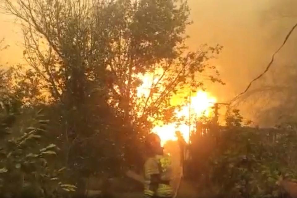 Спасатели тушат 12 лесных и ландшафтных пожаров в Ростовской области. Фото: ГУ МЧС по РО