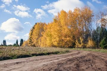 Октябрь даст о себе знать: какая погода ждет ижевчан на следующей неделе?
