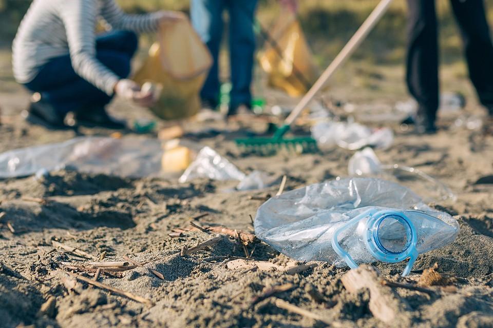 Правительство страны обеспокоилось тем, какое количество пластика попадает в окружающую среду и загрязняет ее