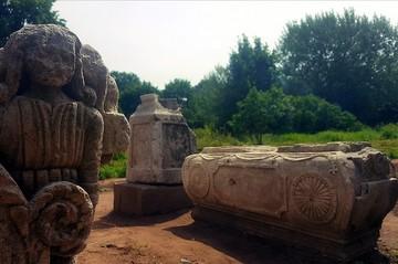 Власти обратили внимание на старинный некрополь благодаря жителю Твери