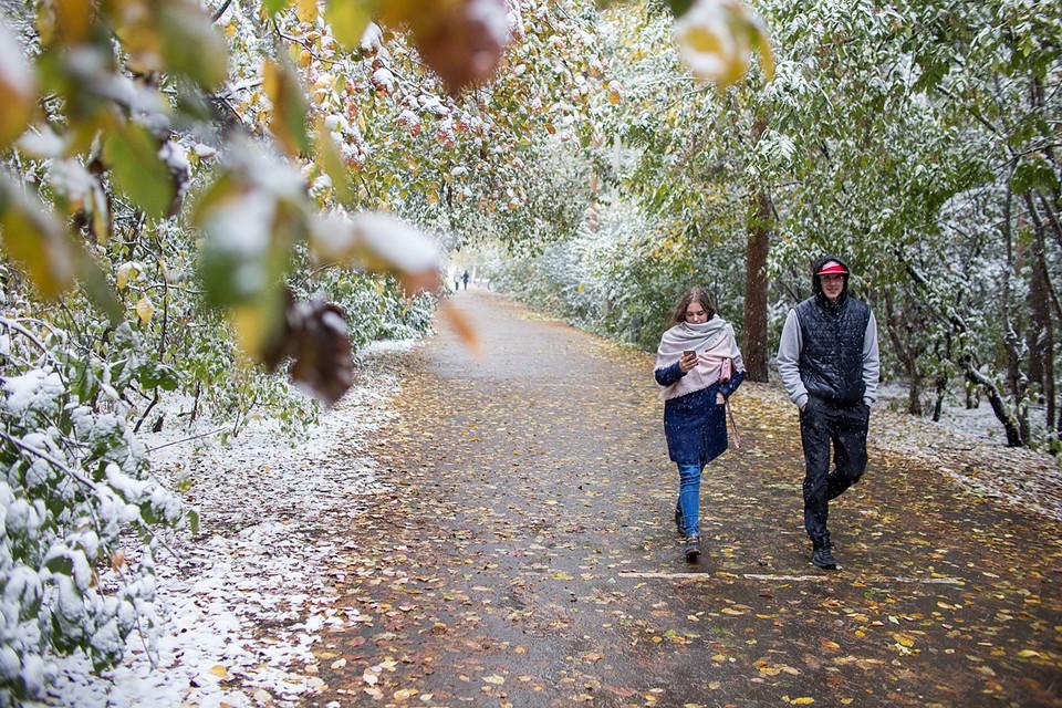 В воскресенье ночью заморозки до -3, и наверняка выпадет мокрый снег