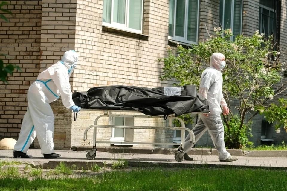 Петербургский НИИ сделал заявку на покупку частей тела, чем взбудоражил общественность.