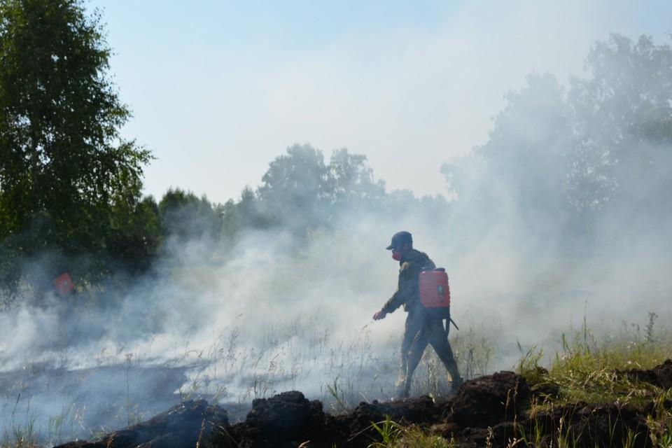 C начала пожароопасного сезона в Челябинской области потушили 573 лесных пожара на площади 3369,54 га. Фото: Priroda.chel.ru