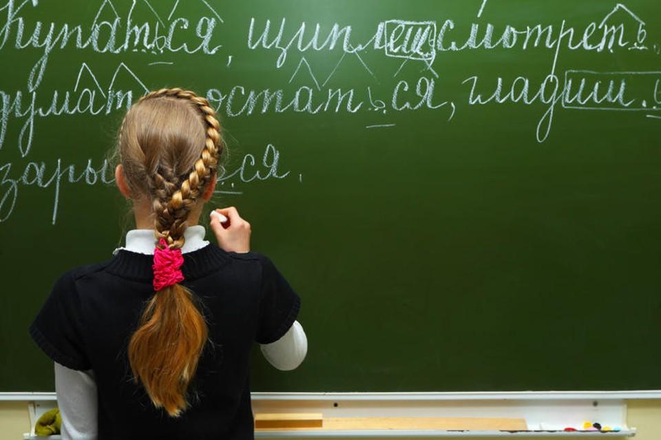 Русский язык должен быть обязательным в школьных программах Молдовы, считает Игорь Додон.