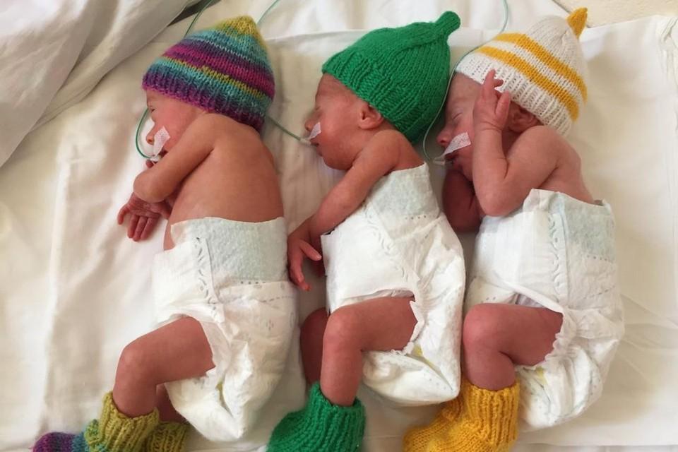Крошечные тройняшки родились у Алины раньше срока. Фото: Алина КАЗАНЦЕВА