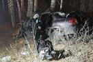 Машина всмятку: в Екатеринбурге женщина налетела на дерево и разбилась насмерть
