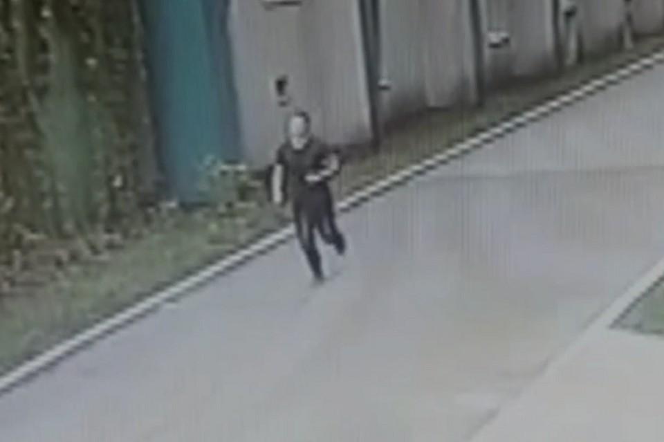 Фото: скриншот с видео СК по Свердловской области