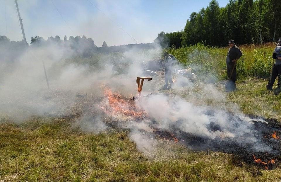 Ученые ТГУ разработали систему раннего выявления пожаров на большом расстоянии