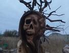 В Воронеже сожгут деревянное чучело коронавируса