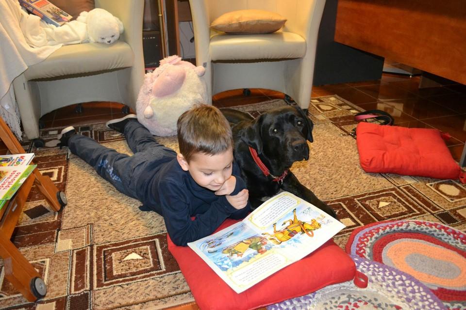 Собаки становятся не только преданными друзьями, но и настоящими докторами