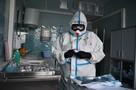 Коронавирус в Воронеже, последние новости на 18 ноября 2020: контактных не проверяют, пациентов выписывают без отрицательных тестов