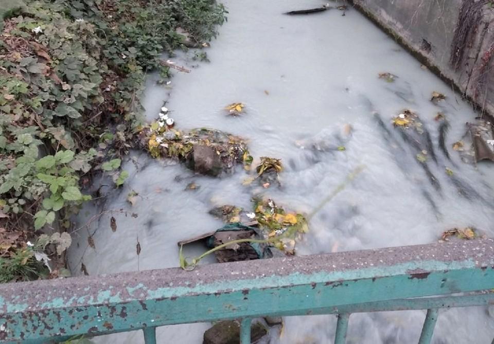 Славянка Симферополя превратилась в молочную реку. Фото: Инцидент Симферополь / ВКонтакте