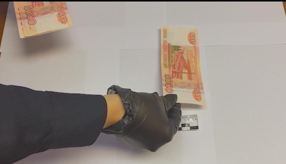 В Югре задержали группу фальшивомонетчиков Фото: скриншот с видео пресс-службы УМВД России по ХМАО – Югре