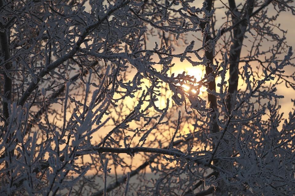 В Якутии установилась холодная погода