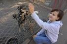 Сотрудники «ПИФ» рассказали о мифах, которые окружают приюты для бездомных животных