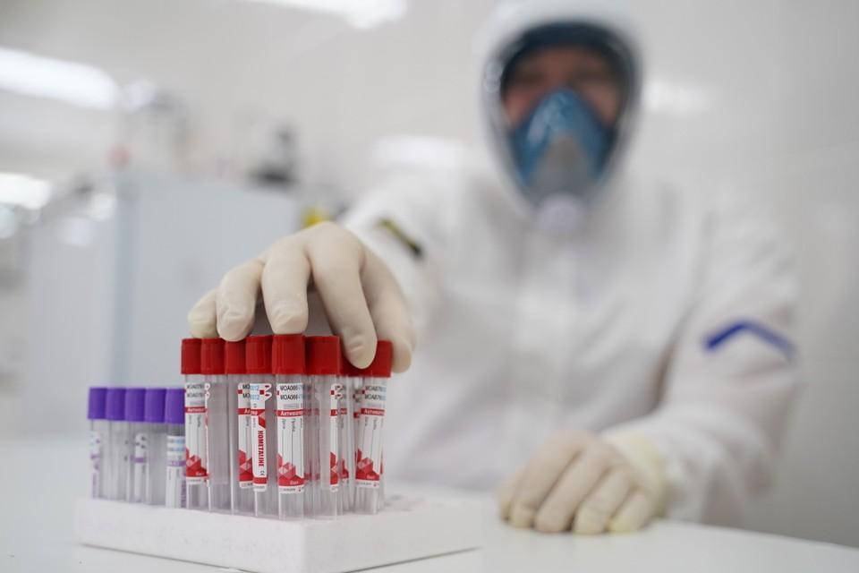 Часть врачей считает, что коронавирус мог появиться «из пробирки»