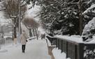 В Красноярске морозы продержатся до Рождества