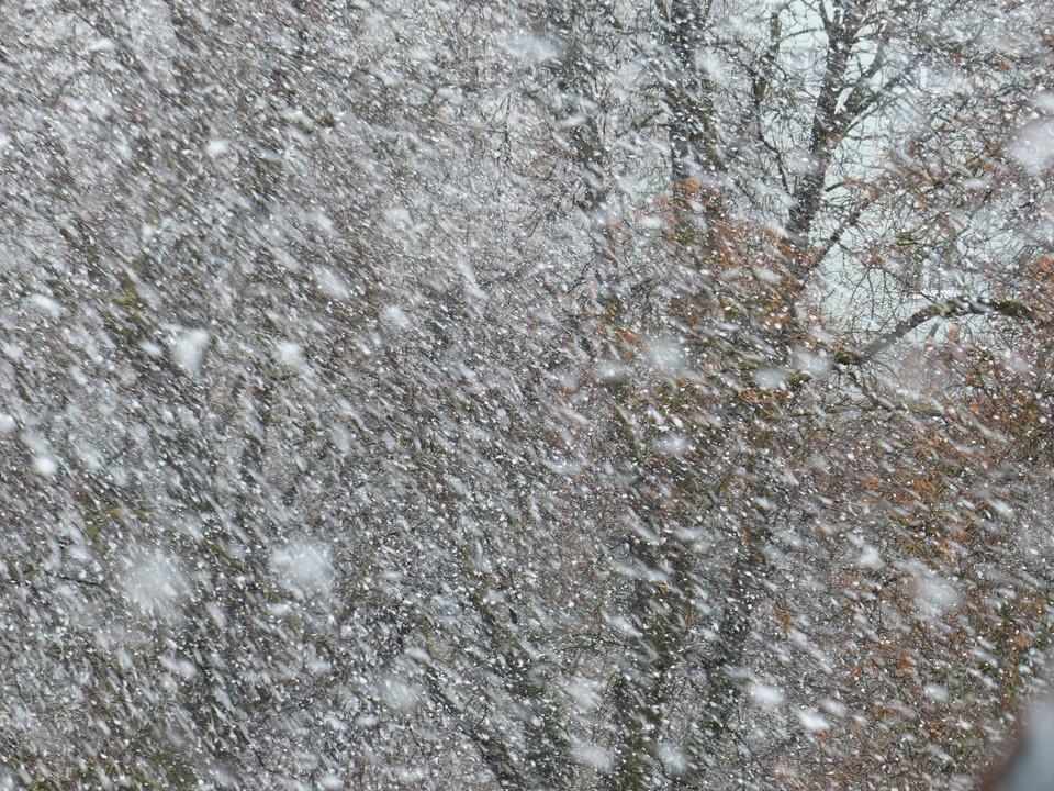 Под ударом стихии окажутся Алматинская, Мангистауская, Западно-Казахстанская, Кызылординская, Павлодарская и Жамбылская области