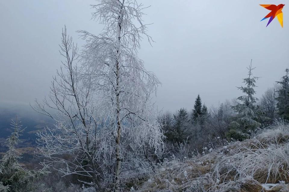 В Беларуси резко похолодает - и уже скоро