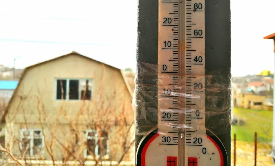 В Крыму зима выдалась очень теплой.