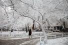 Прогноз погоды на январь 2021 в Ставропольском крае: какую погоду ждать в первый месяц года