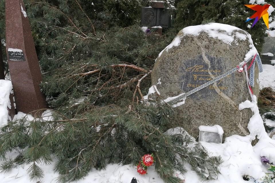 Могила Василя Быкова выглядела 12 января вот так. Фото: Наталья СВЕТЛОВА