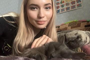 «Остался петербургским аристократом»: кот Кузя спустя пять месяцев после побега из аэропорта Ярославля встретился со своей хозяйкой