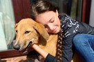 Звезды спорта на самоизоляции заводят собак: У тебя ведь четыре ноги, тренироваться мне помоги