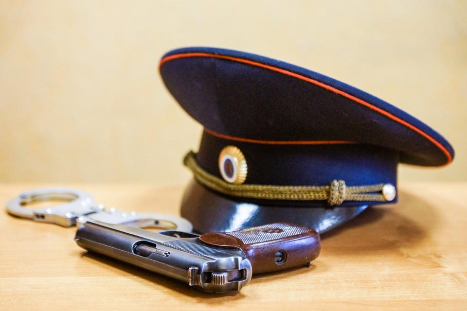 Полиция проводит проверку, уголовное дело еще не возбуждено