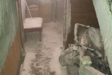 «Реально Нарния!»: в Салехарде подъезд дома покрылся льдом изнутри