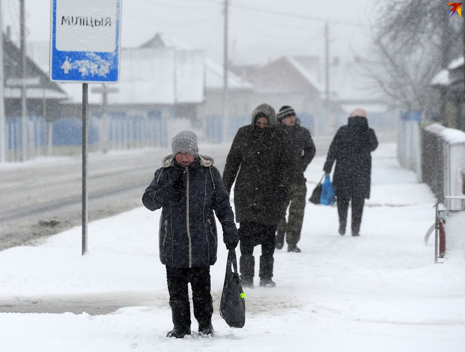 На Полесье 26 января пришел сильный ветер.