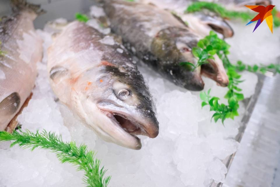 В 9 тоннах рыбы нашли живых паразитов.