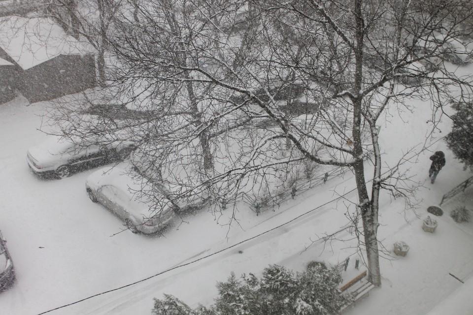 В такую погоду все свои сидят дома.