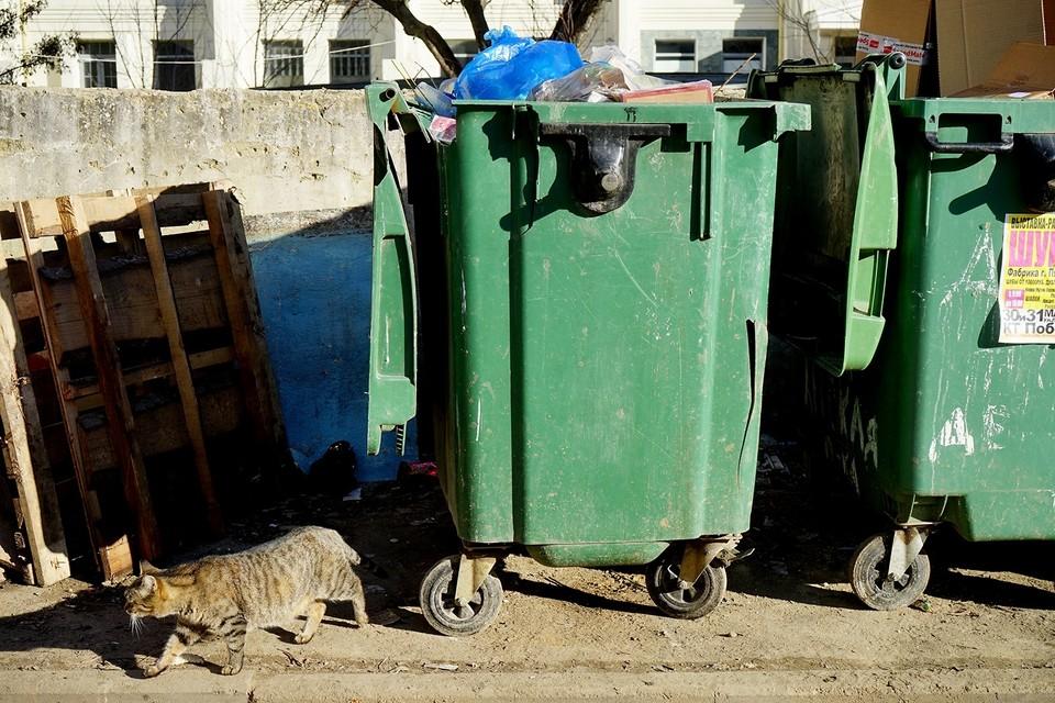 В Мценске из-за технических причин перестали вывозить мусор