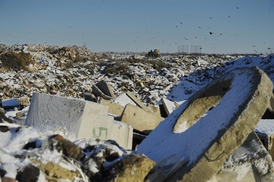 Рекультивацию полигона в Каменке закончат к концу марта