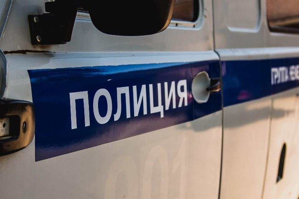 Полиция прекратила поиски школьницы с котом в Кузбассе