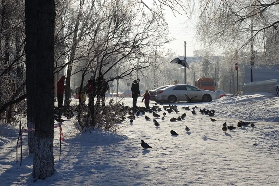 Температура падает: в ночь на 21 февраля в Кузбассе ожидается до -34 градусов