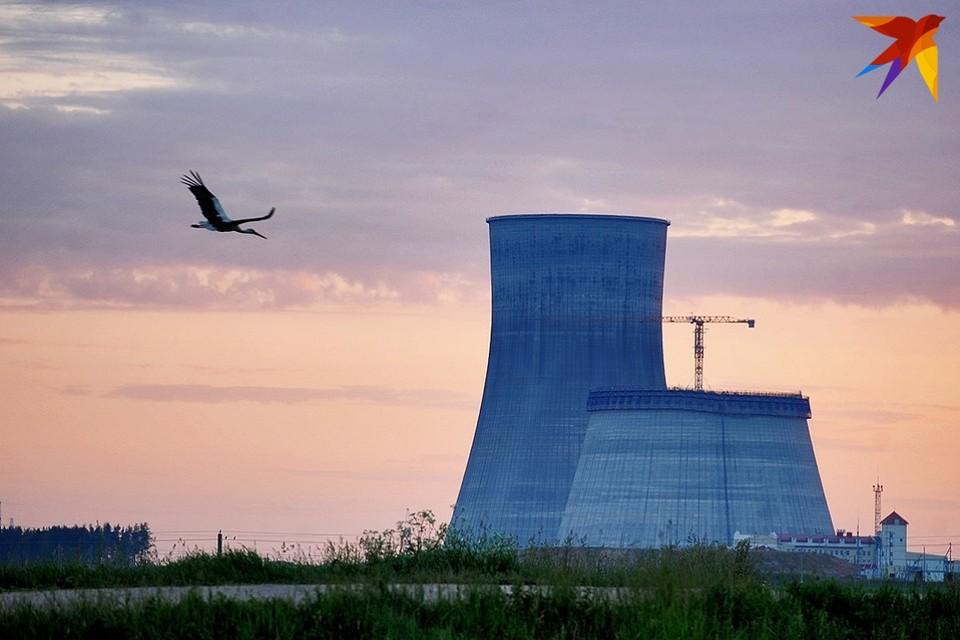 Принять в эксплуатацию первый энергоблок БелАЭС могут уже в конце весны - начале лета 2021 года.